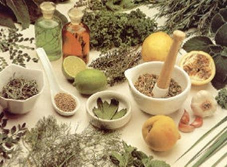Chás Que Trazem A Cura plantas medicinais