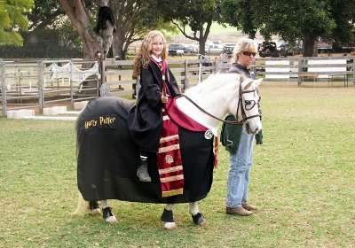 fantasia para cavalo harry potter