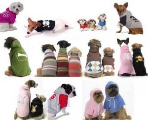 roupa para cão 300x242