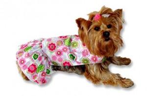 roupa para cão4 300x195