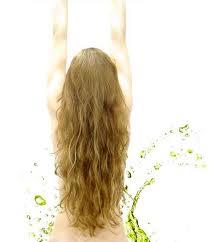 Dicas Caseiras Para Que os Cabelos Cresça Mais Rápido  Dicas Caseiras Para Que o cabelo cresça mais rápido