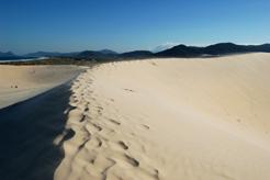 Lugares Para Passear em Florianópolis SC  dunas
