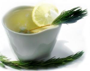 Benefícios do Chá de Alecrim  Como Fazer Benef%C3%ADcios do Ch%C3%A1 de Alecrim 300x236