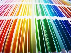 Tinta Suvinil 2012  Tendência de Cores, Catálogo de Co