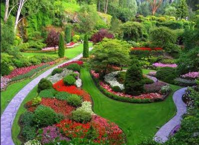Modelos de Plantas Mais Usadas na Decoração de Jardins Fotos  Decoração de Jardim1