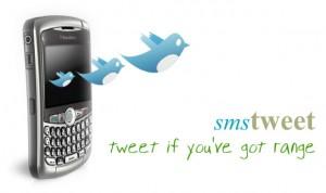 Como Enviar Fotos do Celular Para o Twitter Via SMS   Passo a Passo twitter foto sms 300x178