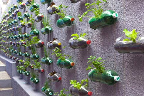 Horta Vertical Orgânica em Casa – Dicas, Como Fazer  horta vertical1