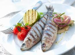 Benefícios da Sardinha para a Saúde Sardinha