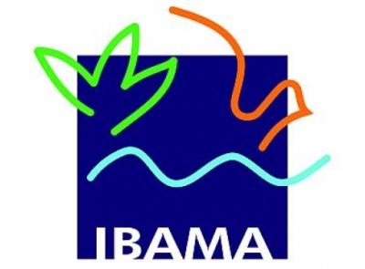 Concurso Público  IBAMA 2013  Inscrições, Vagas, Provas, Taxa  ibama