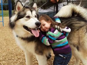 Hábitos Saudáveis Para Vida de Seu Cachorro – Dicas, Informações  (3)