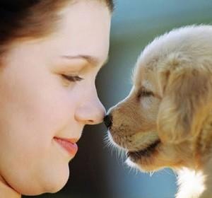 Hábitos Saudáveis Para Vida de Seu Cachorro – Dicas, Informações  (5)