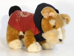 casaco cão