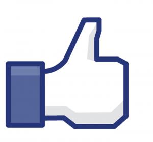 Como Mudar a Cor do Seu Facebook   Passo a Passo, Dicas Como Mudar a Cor do Seu Facebook Passo a Passo Dicas 2 300x279