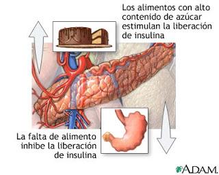 Hipoglicemia 1