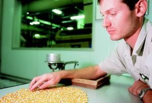 -Programa-de-Estágio-Monsanto-2013