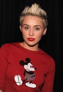 Sucessos de Miley Cyrus – Sua Carreira, Informações, Criticas (7)