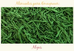 ali-emagrecer-algas