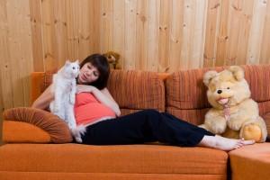 Doenças Transmitidas Pelo Gato – Quais São, Causa, Sintomas (3)