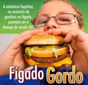 Saude Figado Gordo