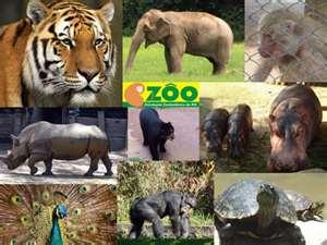 Zoologico_Sapucaia_do_Sul