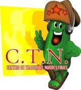 ctn 2013