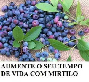 mirtilo fruta rica em vitaminas