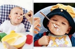 bebes-comendo