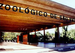 Zoológico-De-São-Paulo-SP-