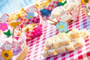 festa-picnic-2